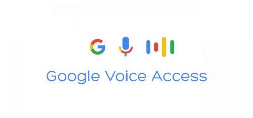 Control intregral cu Google Voice Access